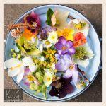 Fiori da mangiare: quali sono e come usarli in cucina