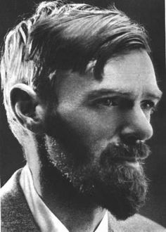 Never saw a wild thing, sorry for itself. A small bird will drop frozen dead from a bough without ever having felt sorry for itself.Self Pity D H Lawrence, Pitch Dark, Self Pity, Old Images, American Literature, His Eyes, Light In The Dark, Che Guevara, Poems