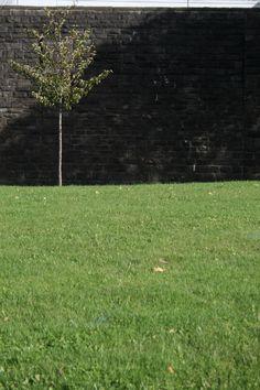Cardiff (Cardiff prison wall )