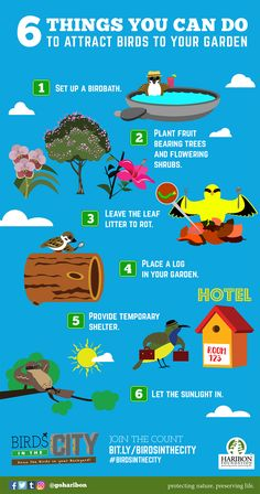 7 Best Philippine Environment & Biodiversity Infographics images in