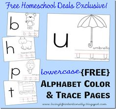 This set of free lowercase alphabet color and trace pages is from Beth of Today I wanted to share a free printable to help th Preschool Letters, Letter Activities, Free Preschool, Preschool Printables, Learning Letters, Preschool Kindergarten, Preschool Learning, Learning Activities, Letter Worksheets
