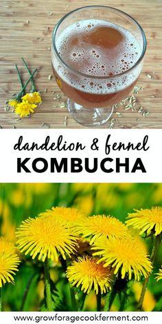 Dandelion and Fennel Kombucha Kombucha Recipe, Probiotic Drinks, Sparkling Drinks, Herb Recipes, Healthy Drinks, Healthy Recipes, Fermented Foods, Edible Flowers, Spring Recipes