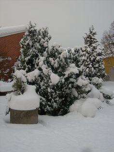 Snön framför huset i december 2009