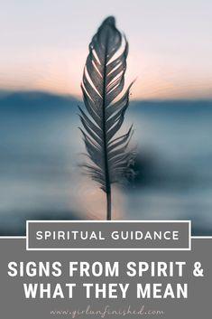 Spiritual Guidance: Signs From Spirit & What They Mean Spiritual Guidance, Spiritual Life, Spiritual Growth, Spiritual Awakening, Spiritual Meaning, Spiritual Symbols, Spiritual Messages, Spiritual Health, Psychic Development