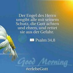 Vers des Tages   Der Engel des Herrn umgibt alle mit seinem Schutz, die Gott achten und ehren, und rettet sie aus der Gefahr.               📖 Psalm 34,8  #erlebeGott