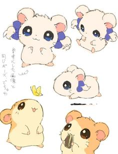 Hamtaro...oh my gosh, I remember this show!