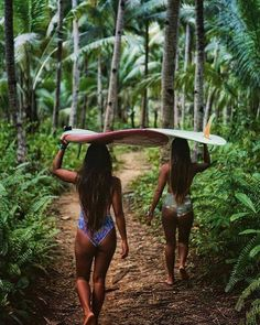 Surfing holidays is a surfing vlog with instructional surf videos, fails and big waves Summer Feeling, Summer Vibes, Vans Surf, Learn To Surf, Skateboard Art, Skateboard Clothing, Burton Snowboards, Surfs, Surf Girls