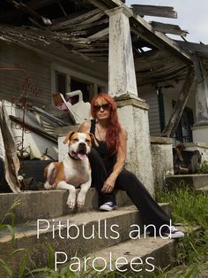Pit Bulls and Parolees TV Show: News, Videos, Full Episodes and More | TVGuide.com (Go to Visit)