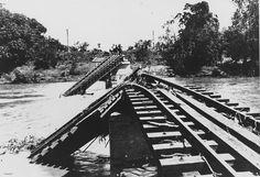 Flood damaged railway bridge over the Burdekin River, 1917 | Flickr - Photo Sharing!