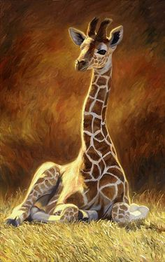 """Baby Giraffe"", oil on canvas, x by Lucie Bilodeau. A painting of a two week old giraffe. Available as prints. Giraffe Painting, Giraffe Art, Cute Giraffe, Giraffe Pictures, Animal Pictures, Animal Paintings, Animal Drawings, Baby Animals, Cute Animals"