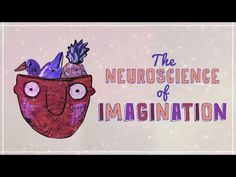 Imagine, for a second, a duck teaching a French class. A ping-pong match      in orbit around a black hole. A dolphin balancing a pineapple. You      probably haven't actually seen any of these things. But you could      imagine them instantly. How does your brain produce an image of      something you've never seen? Andrey Vyshedskiy details the neuroscience      of imagination.