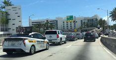 En Miami amamos secretamente estas 13 COSAS Versailles, Miami Beach, Nursery Trees, Weather Charts, Mini Vacation, Yearly