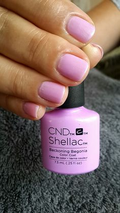 Need I say more? Absolutely gorgeous colour, for any occasion. CND Shellac - Beconing Begonia www.complexions.co.zw