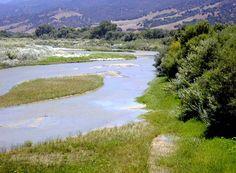 """Of Mice & Men"" country, Salinas River, near Chualar, CA"