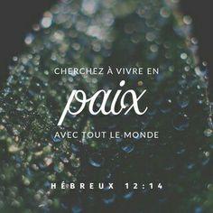 HÉBREUX 12v14
