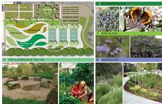 Enrich LA + Walgrove Elementary in Venice, CA to transform 28,000 sq/ft of asphalt into a woodland meadow