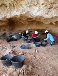 EXCAVACIONES ATAPUERCA  Científicos trabajan en Atapuerca para identificar una especie única de oso  Burgos, 10 jul (EFE).- Los científicos de Atapuerca intentan completar la identificación de una especie única de oso cuyos restos fueron localizados en el yacimiento de Gran Dolina en 1990.