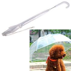 Patgoal Waterproof Pet Umbrella Dog Transparent Umbrella Raincoat With Leash -- Click image to review more details. (This is an affiliate link and I receive a commission for the sales)
