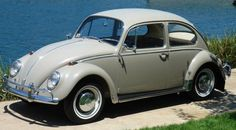 Volkswagen Bus, Vw Beetles, Antique Cars, Scale, Type 1, Beetles, Autos, White People, Classic