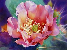 """Prickly Pink"" cactus flower watercolor painting by Cheryl Weinfurtner floral art Watercolor Cactus, Watercolour Painting, Painting & Drawing, Watercolours, Art Floral, Fleurs Diy, Cactus Art, Cactus Flower, Flower Art"