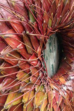 Ik kan niet genoeg krijgen van de prachtige kleuren van de bladeren van de esdoorn. Ik wilde genieten van de esdoorn bladeren voor zo lang als ik kan, dus heb ik besloten om de kransen van hen. De uitwendige diameter van kransen met de kruidenpasta is 50cm (ongeveer 19 inch), en zonder hen - 30cm (ongeveer 12 inch). De de inwendige diameter is 8cm (ongeveer 3 inch). De dikte is ongeveer 5cm (ongeveer 2 duim)