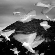 """(7) """"Undiscovered"""" Photo Assignment -- National Geographic Your Shot"""