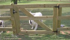 economical post and rail option; rails with post and rail fence - Modern Design Farm Gate, Farm Fence, Backyard Fences, Fenced In Yard, Dog Run Fence, Diy Dog Fence, Post And Rail Fence, Split Rail Fence, Scary Dogs
