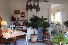mökki,viherkasvit,huonekasvit,maalaishenki,tunnelmallinen,vanhanaikainen,kesämökki,viherkasvit sisustuksessa