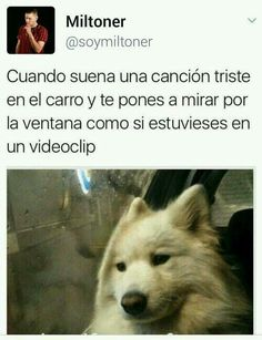 Yo: Hello from the other side Funny Spanish Memes, Spanish Humor, Mexican Memes, True Feelings, Wtf Funny, Best Memes, Funny Images, True Stories, Laughter