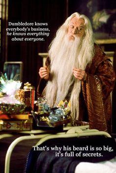 Mean girl Dumbledore