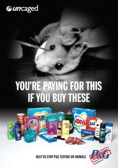 MAke Money Test Apps - Do not buy P (Procter and Gamble) or from any other company that tests on animals. You are paying for this. Getting Paid To Test Apps With AppCoiner Is As Simple As Stop Animal Testing, Stop Animal Cruelty, Animal Testing Quotes, Animal Cruelty Quotes, Chinchilla, Pitbull, Mon Combat, Cane Corso, Sphynx