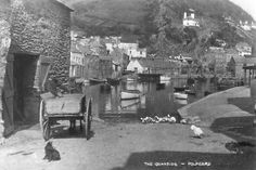 Photos of Devon and Cornwall in the West Country,Photos on Canvas,digital art Polperro Cornwall, Devon And Cornwall, Fishing Villages, Old English, Photo Canvas, Old Photos, England, History, Digital Art