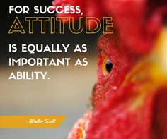 For success, attitude is equally important as ability. #ThoughtfulThursday