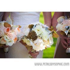 Petals by Sophie