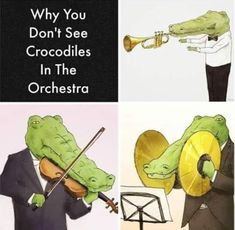 Very random - - More memes, funny videos and pics on Flute Memes, Marching Band Memes, Music Jokes, Funny Music, Band Jokes, Funny Memes, Hilarious, Funny Videos, Band Nerd