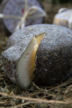 Zoff caciotta cheese flavoured with peppermint