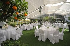 Intense heat or rain may require you to rent a tent for your outdoor garden wedding ceremony. Review these 11 helpful garden wedding tips before you plan an outdoor ceremony/reception.