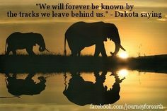Inspirational quotes elephant images - Google Search                                                                                                                                                     More