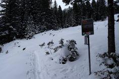 Bildergebnis für lvs checkpoint Snow, Outdoor, Outdoors, Outdoor Living, Garden, Eyes