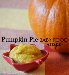 Pumpkin Pie Baby Food Recipe - easy to make and loaded with nutrients! The crisp fall weather is here, and Liza Huber from Sage Spoonfuls is sharing a yummy, seasonal Pumpkin Pie Puree baby food recipe. Healthy Sweet Snacks, Nutritious Snacks, Baby Puree Recipes, Pureed Food Recipes, Canned Pumpkin, Pumpkin Puree, Baby Eating, Homemade Baby Foods, Baby In Pumpkin