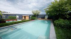 Compass Pools swimming pool