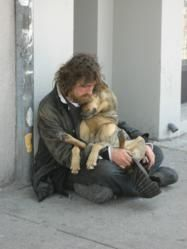 Feeding Pets of the Homeless Leads National Pet Food Drive dogs-in-the-news