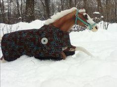 Duke in the snow
