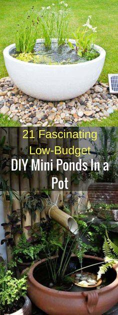 gartendesign ideen 21 Fascinating Low-Budget DIY Mini Ponds In a Pot Amazing Gardens, Mini Pond, Budget Backyard, Water Features In The Garden, Diy Garden Projects, Outdoor Gardens, Fountains Outdoor, Backyard, Diy Water