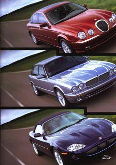 Jaguars of the Millenium