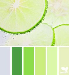 Color Inspiration  Design Seeds | for all who  color