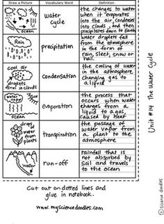 The Water Cycle Foldable Plus Vocabulary Sheets FREE By S