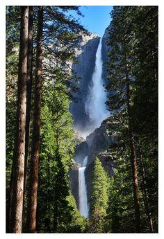 Yosemite National Park - Andrew Thomas Photography