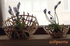 Printemps Art Floral, Plants, The Creation, Spring, Flower Art, Plant, Planting, Planets