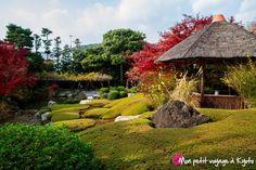 Le temple Taizô-in est un des temples secondaire du temple Myôshin-ji. http://voyageakyoto.fr/taizo-in/